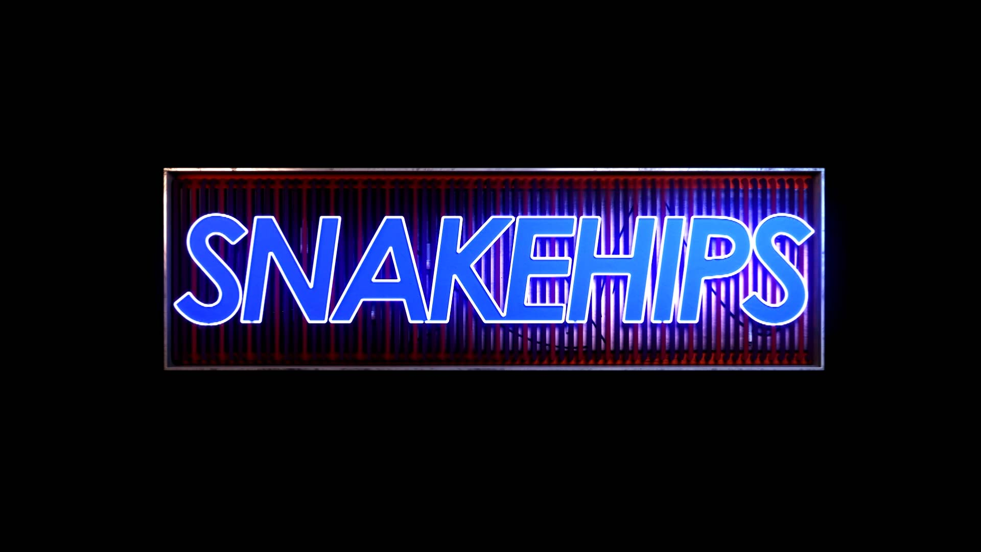 snakehips-seq-0-00-53-11